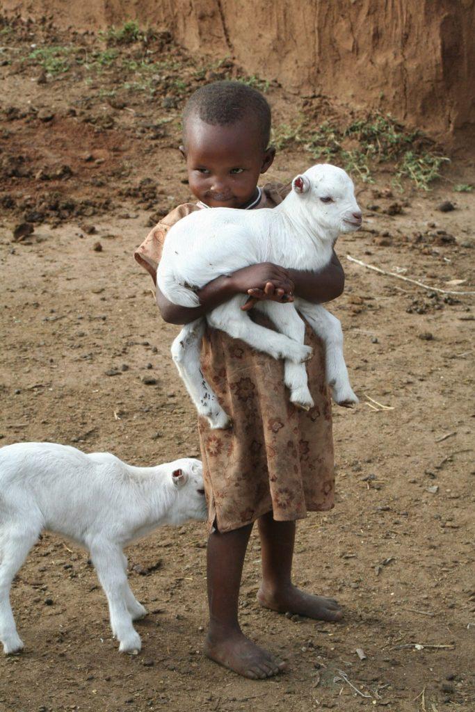 Kinder pflegen Tiere auf einer Farm